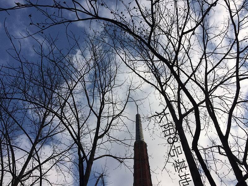 烟囱和冬天的树枝配在一起也是极好的景致!